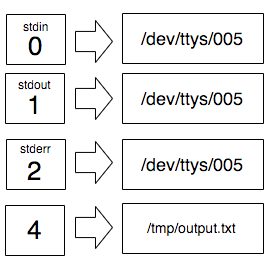 On the left the list of file descriptors from 0 to 2 and an extra 4. Above 0, 1, and 2 we can see `stdin`, `stdout`, and stderr` and they point to the tty file. The file descriptor 4 points to /tmp/output.txt